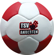 PU Trainings- u. Match Handball TSV Anderten