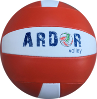 Promotion Volleyball