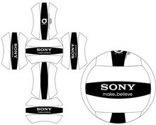 Volleyball Layout SONY